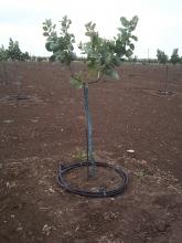 Irrigation system used in Larissa, Greece