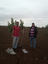 Mr. A. Tsoutsikos and Mr. Tsinoulis, soil sampling in a pistachio orchard in Larissa, Greece