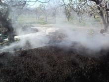 Κομπόστ από απόβλητα κατεργασίας φυστικιών-AgroStrat